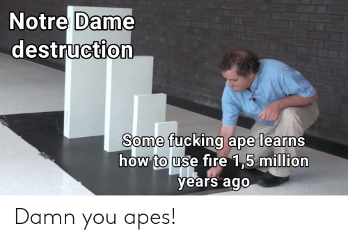 apes: Notre Dame  destruction  Some fucking ape learns  how touse tire 15 miuion  years ago Damn you apes!