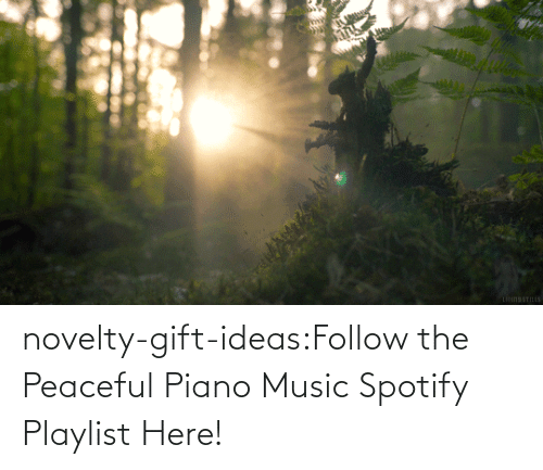 follow: novelty-gift-ideas:Follow the Peaceful Piano Music Spotify Playlist Here!