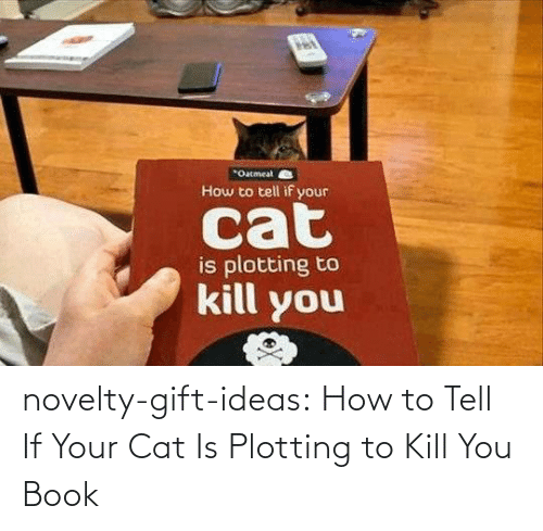 Book: novelty-gift-ideas:  How to Tell If Your Cat Is Plotting to Kill You Book