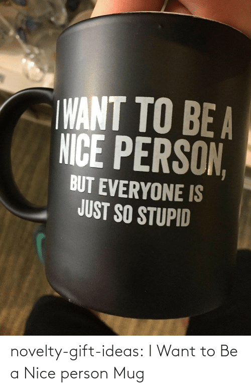 i want to be: novelty-gift-ideas:  I Want to Be a Nice person Mug