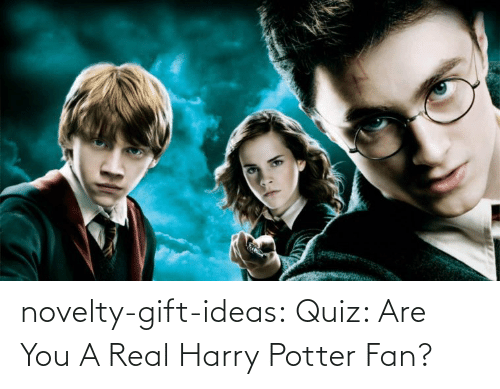 ideas: novelty-gift-ideas:  Quiz: Are You A Real Harry Potter Fan?