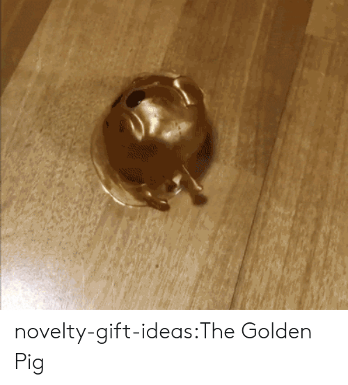 Smashing, Tumblr, and Blog: novelty-gift-ideas:The Golden Pig