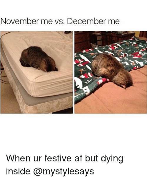 Af, Girl Memes, and Inside: November me vs. December me When ur festive af but dying inside @mystylesays
