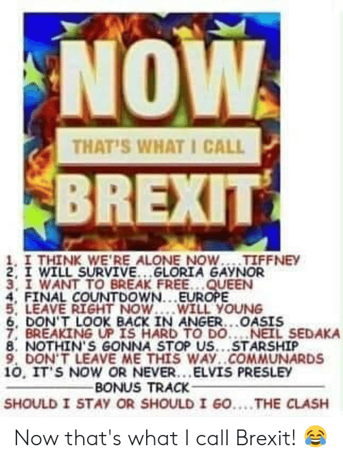 Being Alone, Countdown, and Memes: NOW  BREXIT  THAT'S WHAT I CALL  1, I THINK WE'RE ALONE NOW... TIFFNEY  2, I WILL SURVIVE.. GLORIA GAYNOR  3, I WANT TO BREAK FREE. .QUEEN  4, FINAL COUNTDOWN... EUROPE  5, LEAVE RIGHT NOW.WILL YOUNG  6, DON'T LOOK BACK IN ANGER..OASIS  7, BREAKING UP IS HARD TO DO. NEIL SEDAKA  8. NOTHIN'S GONNA STOP US...STARSHIP  9, DON' T LEAVE ME THIS WAY..COMMUNARDS  10, IT'S NOW OR NEVER. ELVIS PRESLEY  BONUS TRACK  SHOULD I STAY OR SHOULD I GO....THE CLASH Now that's what I call Brexit! 😂