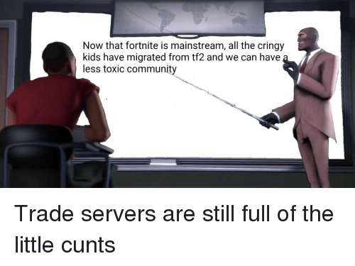 Community, Kids, and All The: Now that fortnite is mainstream, all the cringy  kids have migrated from tf2 and we can have  less toxic community Trade servers are still full of the little cunts