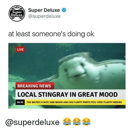 Nicee: NUDEAer Deluxe  xe@superdeluxe  Super  Deluxe  at least someone's doing ok  LIVE  BREAKING NEWS  LOCAL STINGRAY IN GREAT MOOD  18:30  THE WATER IS NICE AND WARM AND HIS FLAPPY PARTS FEEL VERY FLAPPY INDEED @superdeluxe 😂😂😂