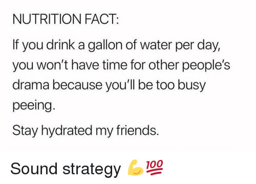 Friends, Gym, and Time: NUTRITION FACT:  If you drink a gallon of water per day,  you won't have time for other people's  drama because you'll be too busy  peeing  Stay hydrated my friends. Sound strategy 💪💯
