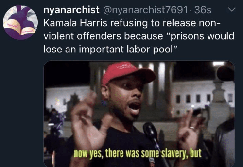 "Pool, Violent, and Yes: nyanarchist @nyanarchist7691 36s  Kamala Harris refusing to release non-  violent offenders because ""prisons would  lose an important labor pool""  now yes, there was some slavery, but"