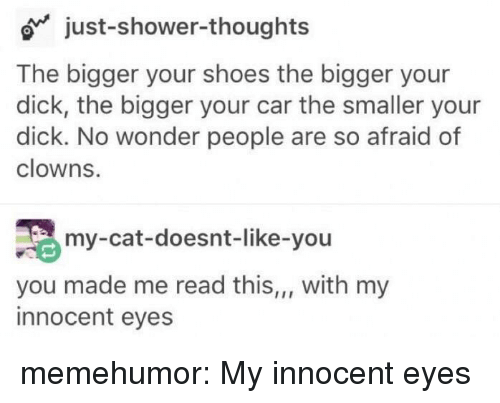 Shoes, Shower, and Shower Thoughts: o just-shower-thoughts  The bigger your shoes the bigger your  dick, the bigger your car the smaller your  dick. No wonder people are so afraid of  clowns.  my-cat-doesnt-like-you  you made me read this,,, with my  innocent eyes memehumor:  My innocent eyes