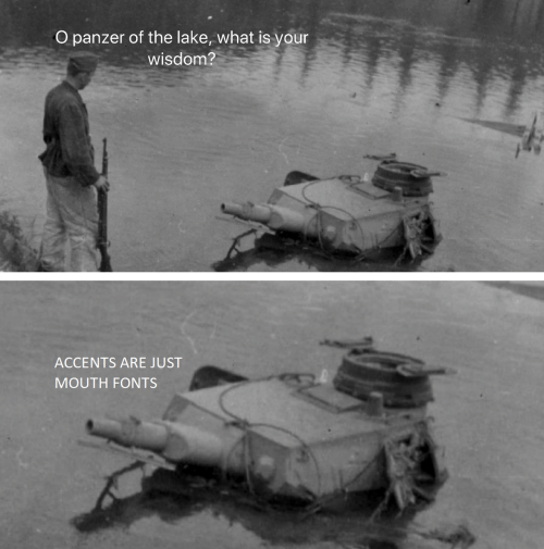 accents: O panzer of the lake, what is your  wisdom?  ACCENTS ARE JUST  MOUTH FONTS