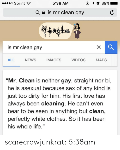 "Clothes, Life, and Love: o Sprint  @ 10 89%  5:38 AM  is mr clean gay  Q  is mr clean gay  NEWS  IMAGES  MAPS  ALL  VIDEOS  ""Mr. Clean is neither gay, straight nor bi,  he is asexual because sex of any kind is  just too dirty for him. His first love has  always been cleaning. He can't even  bear to be seen in anything but clean,  perfectly white clothes. So it has been  his whole life."" scarecrowjunkrat: 5:38am"