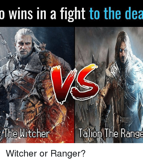 Memes, Fight, and 🤖: o wins in a fight to the dea  The Witcher  lalon The Range Witcher or Ranger?