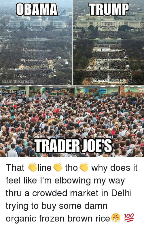 Frozen, Memes, and Obama: OBAMA  TRUMP  adam the Creator  Win Shop  TRADER JOES That 👏line👏 tho👏 why does it feel like I'm elbowing my way thru a crowded market in Delhi trying to buy some damn organic frozen brown rice😤 💯