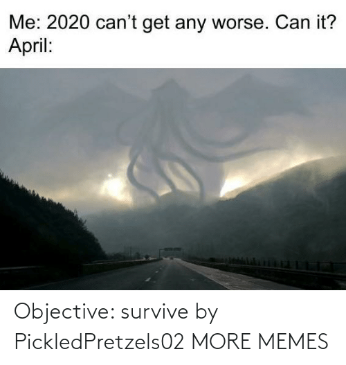 objective: Objective: survive by PickledPretzels02 MORE MEMES