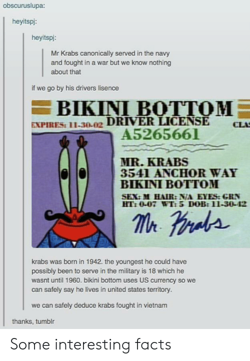 Youngest: obscuruslupa:  heyitspi:  heyitspi:  Mr Krabs canonically served in the navy  and fought in a war but we know nothing  about that  if we go by his drivers lisence  BIKINI BOTTOM  EXPIRES: 11-30-02 DRIVER LICENSE  A5265661  CLA  MR.KRABS  3541 ANCHOR WAY  BIKINI BOTTOM  SEX:M HAIR: N/A EYES:GRN  HT:0-07 WT: 5 DOB:11-30-42  krabs was brnin 1942. the youngest he could have  possibly been to serve in the military is 18 which he  wasnt until 1960. bikini bottom uses US currency so we  can safely say he lives in united states territory.  we can safely deduce krabs fought in vietnam  thanks, tumblr Some interesting facts