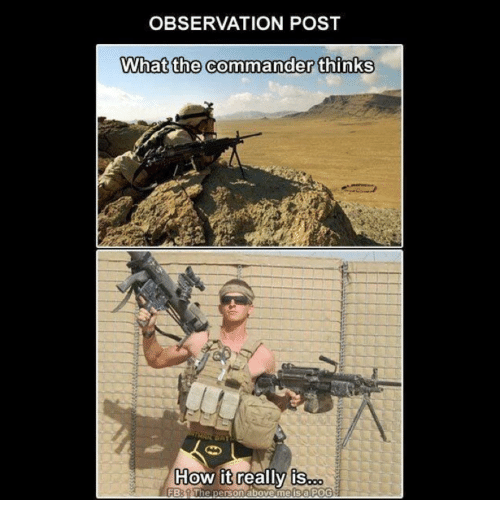 the commander: OBSERVATION POST  What the commander thinks  How it really is  FB: The  person above me is a POG
