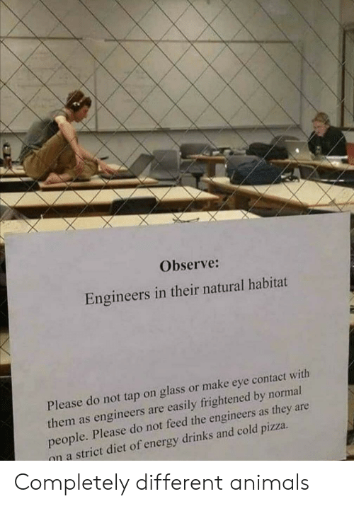 Animals, Energy, and Pizza: Observe:  Engineers in their natural habitat  Please do not tap on glass or make eye contact with  them as engineers are easily frightened by normal  people. Please do not feed the engineers as they are  on a strict diet of energy drinks and cold pizza Completely different animals