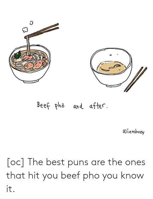 Beef: [oc] The best puns are the ones that hit you beef pho you know it.