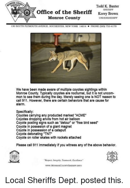"""Skates: OCHERIFFL  Todd K. Baxter  SHERIFF  office of the Sherifforey Brown  NY  Monroe County  UNDERSHERIFF  130 SOUTH PLYMOUTİ AVENUE. ROCHESTER, NEw YORK  146 14  . PHONE (585) 753-4178  We have been made aware of multiple coyotes sightings within  Monroe County. Typically coyotes are nocturnal, but it is not uncom-  mon to see them during the day. Merely seeing one is NOT reason to  call 911. However, there are certain behaviors that are cause for  alarm.  Specifically:  Coyotes carrying any producted marked """"ACME""""  Coyotes dropping anvils from hot air balloon  Coyote posting signs such as """"detour"""" or """"free bird seed""""  Coyote in possesion of a giant magnet  Coyote in possession of a catapult  Coyote detonating """"TNT  Coyote on roller skates with rockets attached  Please call 911 immediately if you witness any of the above behavior.  Respect ntegriny, Teumwork Excelence  www.MoONROECOUNTYSHERIFF INFO Local Sheriffs Dept. posted this."""