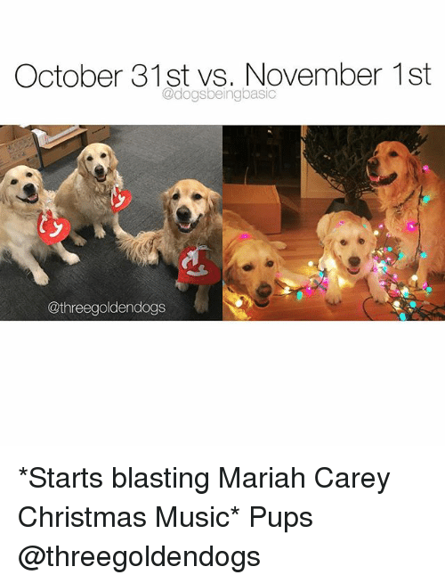 Christmas, Mariah Carey, and Memes: October 31st vs. November 1st  @dogsbeingbasic  @threegoldendogs *Starts blasting Mariah Carey Christmas Music* Pups @threegoldendogs