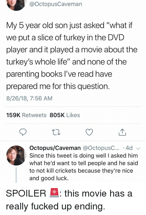 """Books, Funny, and Life: @OctopusCaveman  My 5 year old son just asked """"what if  we put a slice of turkey in the DVD  player and it played a movie about the  turkey's whole life"""" and none of the  parenting books l've read have  prepared me for this question  8/26/18, 7:56 AM  159K Retweets 805K Likes  Octopus/Caveman @octopusC 4d  Since this tweet is doing well I asked him  what he'd want to tell people and he said  to not kill crickets because they're nice  and good luck. SPOILER 🚨: this movie has a really fucked up ending."""