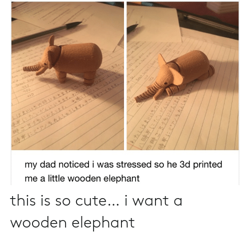 Printed: oecs  t  NES  Nes  NO  my dad noticed i was stressed so he 3d printed  me a little wooden elephant  yES  HES  1わたしはまいにち六  四時ごろうちにかえります。  hhleihT this is so cute… i want a wooden elephant
