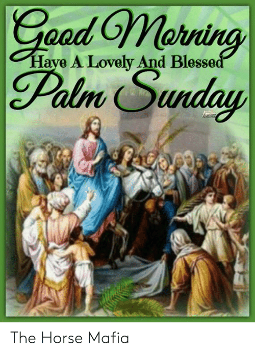 Memes, Horse, and Sunday: oed On  Palm Sunday  Have A Lovely And Blesse The Horse Mafia