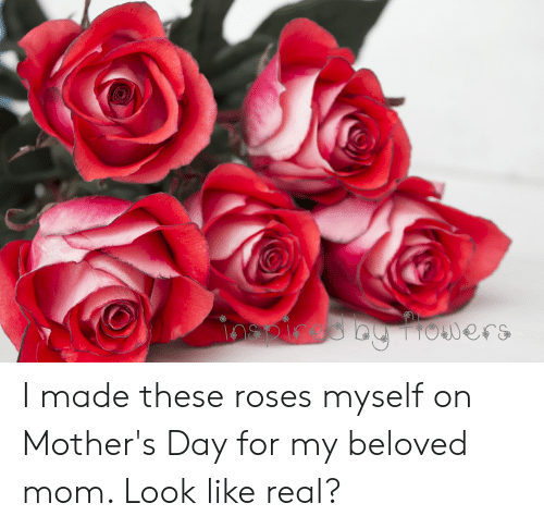 Mother's Day, Mothers, and Mom: oers I made these roses myself on Mother's Day for my beloved mom. Look like real?