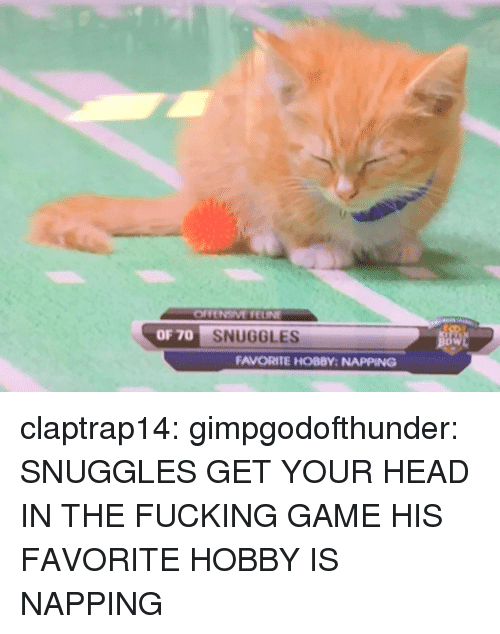 napping: OF 70  SNUGGLES  DW  FAVORITE HOBBY: NAPPING claptrap14: gimpgodofthunder: SNUGGLES GET YOUR HEAD IN THE FUCKING GAME  HIS FAVORITE HOBBY IS NAPPING