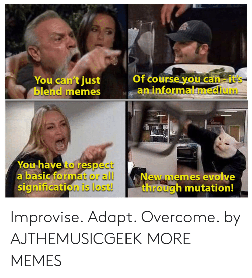 Dank, Memes, and Respect: Of course you can-it's  an informalmedium  You can't just  blend memes  You have to respect  a basic format or all  signification is lost!  New memes evolve  through mutation! Improvise. Adapt. Overcome. by AJTHEMUSICGEEK MORE MEMES