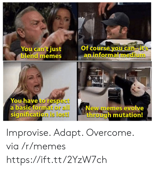 Memes, Respect, and Lost: Of course you can-it's  aninformalmedium  You can't just  blend memes  You have to respect  a basic format or all  signification is lost!  New memes evolve  through mutation! Improvise. Adapt. Overcome. via /r/memes https://ift.tt/2YzW7ch