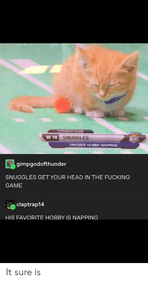 Fucking, Head, and Tumblr: OFFENSIVE FEUNE  OF 70 SNUGGLES  BOW  FAVORITE HOBBY: NAPPING  gimpgodofthunder  SNUGGLES GET YOUR HEAD IN THE FUCKING  GAME  claptrap14  HIS FAVORITE HOBBY IS NAPPING It sure is