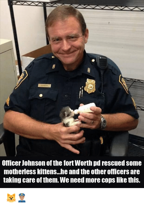 Memes, 🤖, and Take Care: Officer Johnson of the fort Worth pd rescued some  motherlesskittens...he and the otherofficers are  taking care ofthem. We need more cops like this. 🐱👮🏽