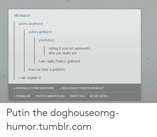 doghouse: officialputin:  putins-boyfriend:  putins-girlfriend:  yourtubes:  reblog if your url represents  who you really are  I am really Putin's girlfriend  then we have a problem  I can explain it  - ORIGINALLY FROM YOURTUBES  - REBLOGGED FROM TYLEROAKLEY  - PERMALINK  POSTED 6 MONTHS AGO  TWEET THIS  837,301 NOTES Putin the doghouseomg-humor.tumblr.com