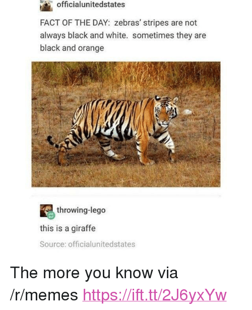 "Lego, Memes, and The More You Know: officialunitedstates  FACT OF THE DAY: zebras' stripes are not  always black and white. sometimes they are  black and orange  throwing-lego  this is a giraffe  Source: officialunitedstates <p>The more you know via /r/memes <a href=""https://ift.tt/2J6yxYw"">https://ift.tt/2J6yxYw</a></p>"