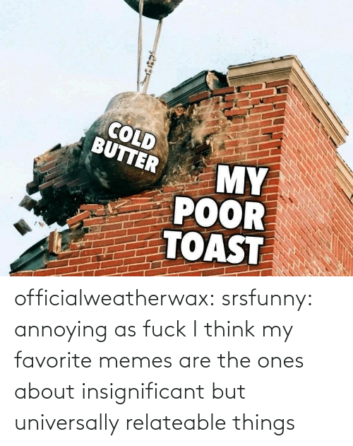 Memes Are: officialweatherwax: srsfunny: annoying as fuck I think my favorite memes are the ones about insignificant but universally relateable things