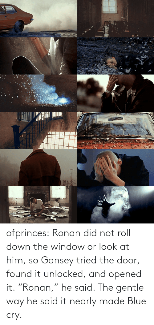 "door: ofprinces: Ronan did not roll down the window or look at him, so Gansey tried the door, found it unlocked, and opened it. ""Ronan,"" he said. The gentle way he said it nearly made Blue cry."
