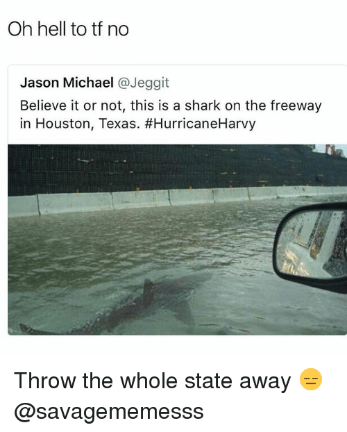 Memes, Shark, and Houston: Oh hell to tf no  Jason Michael @Jeggit  Believe it or not, this is a shark on the freeway  in Houston, Texas. Throw the whole state away 😑 @savagememesss