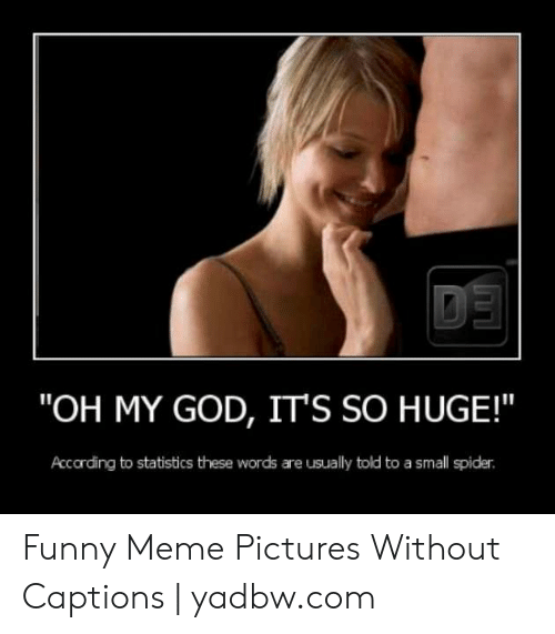 """Funny, God, and Meme: """"OH MY GOD, IT'S SO HUGE!  Accarding to statistics these words are usually told to a small spider Funny Meme Pictures Without Captions   yadbw.com"""