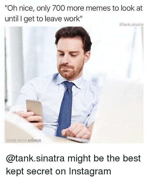 "Instagram, Memes, and Work: ""Oh nice, only 700 more memes to look at  until I get to leave work""  @tank.sinatra  MADE WITH MOMUS @tank.sinatra might be the best kept secret on Instagram"