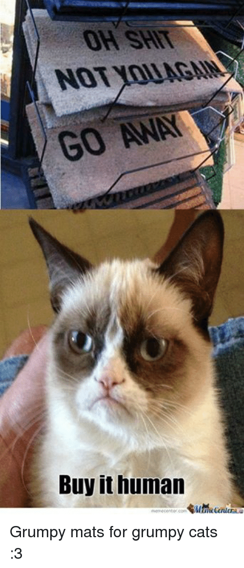 Grumpy Cats: OH SHIT  NOT YOU AGM  GO AWAY  Buy it human Grumpy mats for grumpy cats :3