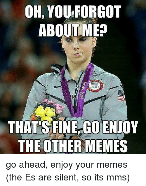 Memes, Mms, and You: OH, YOU FORGOT  ABOUTME  THAT'S FINE GO ENJIOY  THE OTHER MEMES go ahead, enjoy your memes (the Es are silent, so its mms)