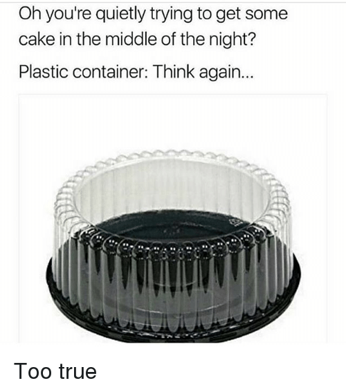 Memes, True, and Cake: Oh you're quietly trying to get some  cake in the middle of the night?  Plastic container: Think again.. Too true