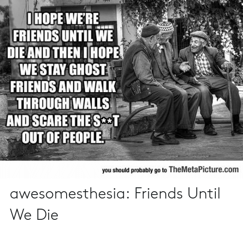 Scare: OHOPE WERE  FRIENDS UNTIL WE  DIEAND THEN IHOPE  WE STAY GHOST  FRIENDS AND WALK  THROUGH WALLS  AND SCARE THE S T  OUT OF PEOPLE  you should probably go to TheMetalPicture.com awesomesthesia:  Friends Until We Die
