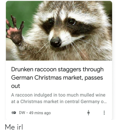 Drunken: oictureNnwidoa/ Klime  Drunken raccoon staggers through  German Christmas market, passes  out  A raccoon indulged in too much mulled wine  at a Christmas market in central Germany o...  DW • 49 mins ago  Ow Me irl