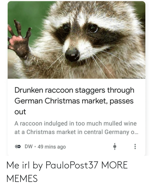Drunken: oictureNnwidoa/ Klime  Drunken raccoon staggers through  German Christmas market, passes  out  A raccoon indulged in too much mulled wine  at a Christmas market in central Germany o...  DW • 49 mins ago  Ow Me irl by PauloPost37 MORE MEMES