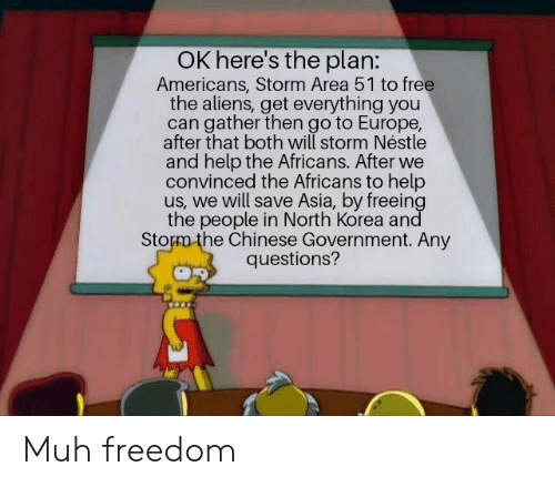 North Korea, Aliens, and Chinese: OK here's the plan:  Americans, Storm Area 51 to free  the aliens, get everything you  can gather then go to Europe,  after that both will storm Néstle  and help the Africans. After we  convinced the Africans to help  us, we will save Asia, by freeing  the people in North Korea and  Storm the Chinese Government. Any  questions? Muh freedom