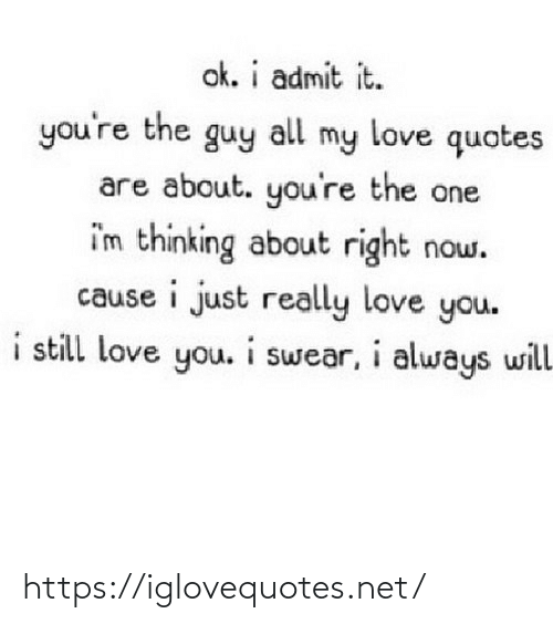 admit it: ok. i admit it.  you're the guy  my love quotes  all  are about. you're the one  i'm thinking about right now.  cause i just really love you.  i still love you. i swear, i always will https://iglovequotes.net/