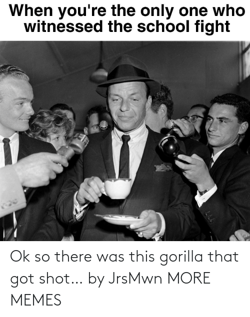 shot: Ok so there was this gorilla that got shot… by JrsMwn MORE MEMES