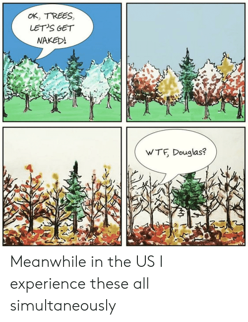 Wtf, Naked, and Trees: OK, TREES  LET'S GET  NAKED!  WTF Douglas? Meanwhile in the US I experience these all simultaneously
